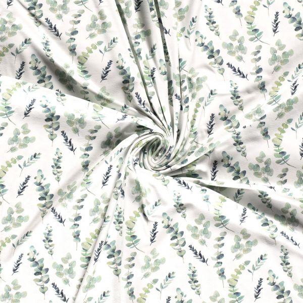 Eukalyptus Jersey